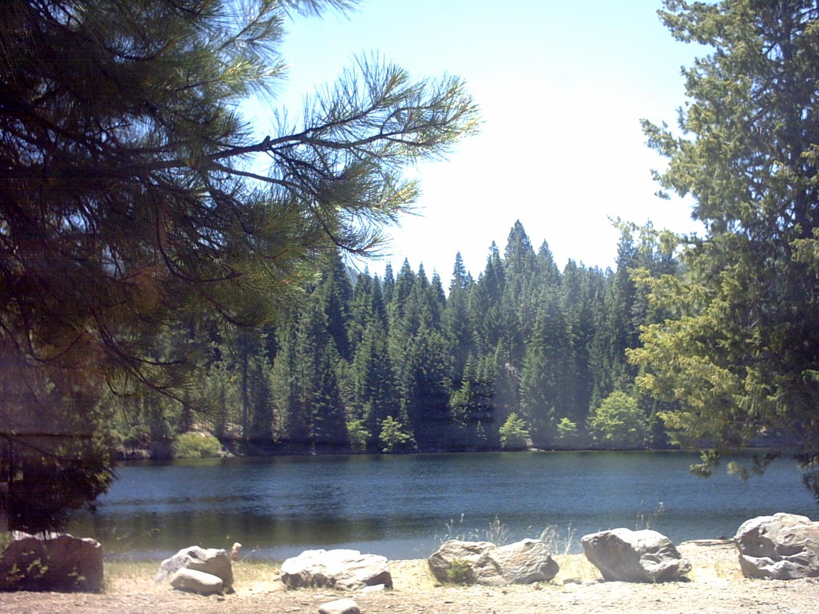 My surrounding area for Lake siskiyou resort cabins